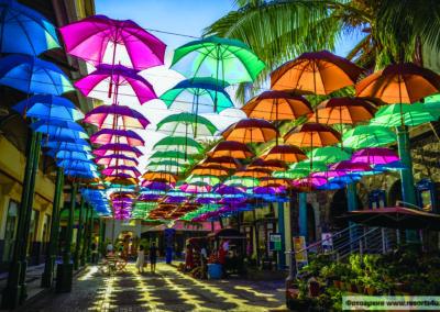 mauritius-port-louis-umbrellas-caudan-waterfront-01