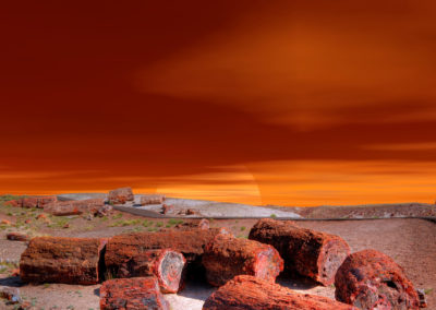 Petrified Forest Sunset