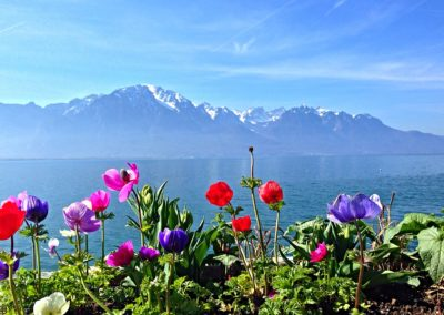 Montreux 1