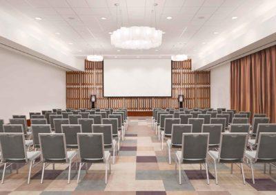 Conference_Room_Avani Barbarons