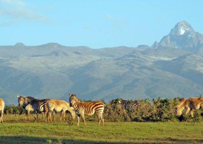 Mt-Kenya
