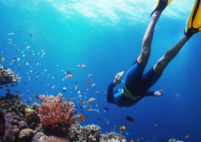Seycheles diving2