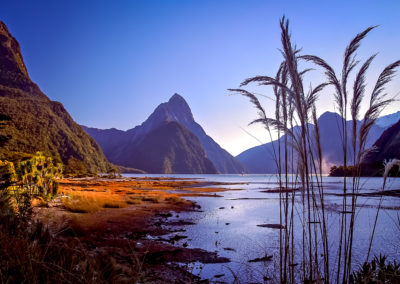 Milford Sound at dawn